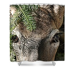 I See You Ginkelmier Inspired Deer Shower Curtain
