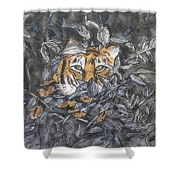 Shower Curtain featuring the painting I See You... Orange Tiger by Kelly Mills