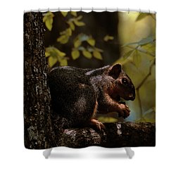 I Thought I Was Alone Shower Curtain
