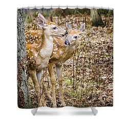 I Thought You Brought The Gps Shower Curtain