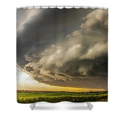 I Was Not Even Going To Chase This Day 020 Shower Curtain