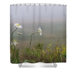 I Watched You Walk Away Shower Curtain