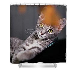 I Will Get It Shower Curtain