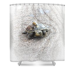 I Will Survive Shower Curtain by Judy Hall-Folde
