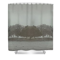I Will Walk You Home Shower Curtain by Dana DiPasquale