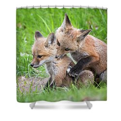 I Wuv You  Shower Curtain