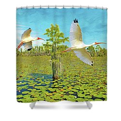 Ibis At Okefenokee Shower Curtain