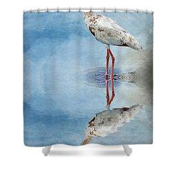 Ibis Shower Curtain by Cyndy Doty