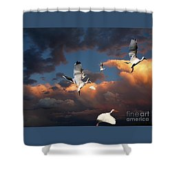Ibis In Flight Shower Curtain