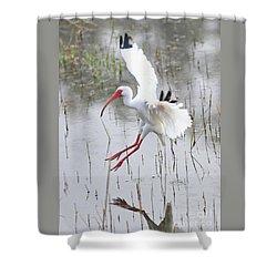 Ibis Soft Water Landing Shower Curtain