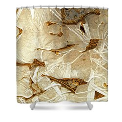 Ice And Needles, Bryce Canyon Shower Curtain