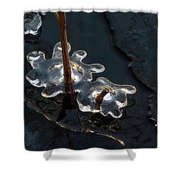 Ice Art Shower Curtain