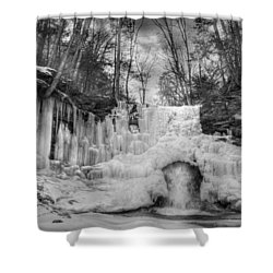 Ice Castle Shower Curtain by Lori Deiter