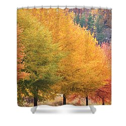 October Trees Shower Curtain