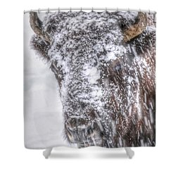 Ice Faced Shower Curtain