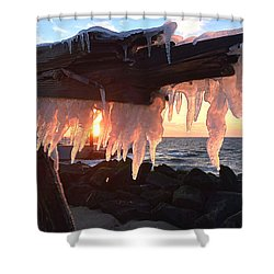 Ice Fangs Shower Curtain