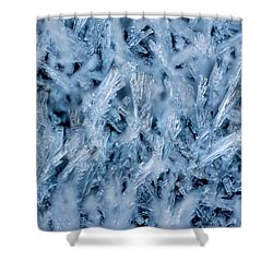 Ice Grass Growing Shower Curtain