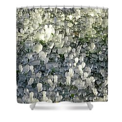 Ice On The Lawn Shower Curtain