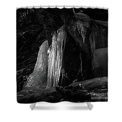 Icicle Of The Forest Shower Curtain by Tatsuya Atarashi