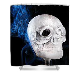 Ice Skulpture Shower Curtain