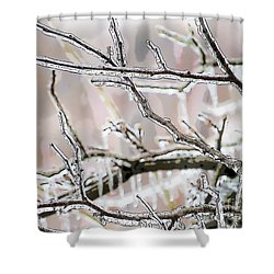 Ice Storm Ice Shower Curtain