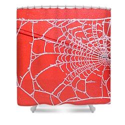 Ice Web Shower Curtain