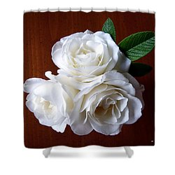 Iceberg Rose Trio Shower Curtain