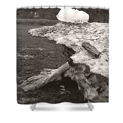 Iceberg Silo Shower Curtain
