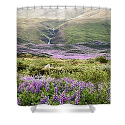 Icelandic Treasures Shower Curtain
