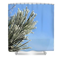 Shower Curtain featuring the photograph Icing On The Needles by Michal Boubin