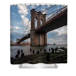 Shower Curtain featuring the photograph Iconic by Anthony Fields