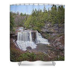 Iconic Falls Shower Curtain