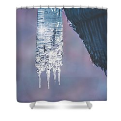 Shower Curtain featuring the photograph Icy Beauty by Ari Salmela