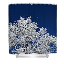 Icy Brilliance Shower Curtain