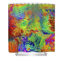 Shower Curtain featuring the photograph Icy Kaleidoscope by Tony Beck