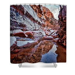 Icy Stillness Shower Curtain by Christopher Holmes