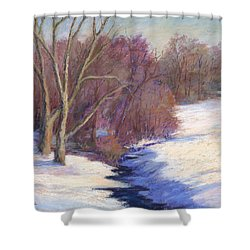 Icy Stream Shower Curtain by Vikki Bouffard