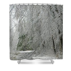 Icy Street Trees Shower Curtain