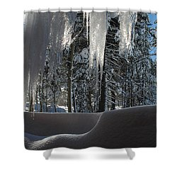 Icy Viewpoint Shower Curtain by Donna Blackhall