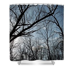 Icy Winter Sky Shower Curtain