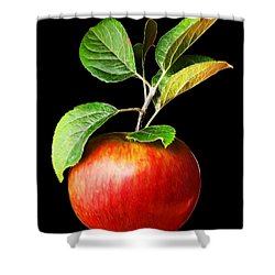 Ida Red Apple And Leaves Shower Curtain by Wernher Krutein