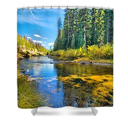 Idaho Stream 2 Shower Curtain