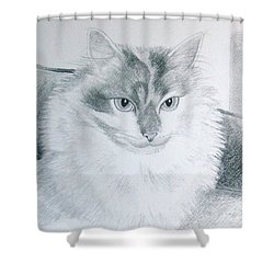 Idget Shower Curtain by Joette Snyder