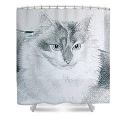 Idget Shower Curtain
