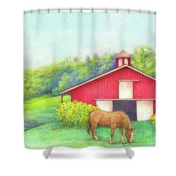 Idyllic Summer Landscape Barn With Horse Shower Curtain