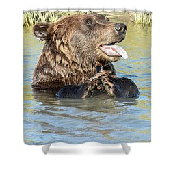 If A Bear Pants In The Woods ... Shower Curtain
