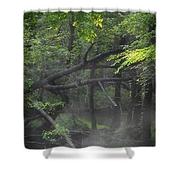 Shower Curtain featuring the photograph If A Tree Falls In The Woods by Skip Willits