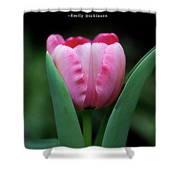 Shower Curtain featuring the photograph If I Were A Bee by Dale Kincaid