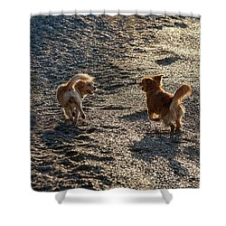 If You Want A Friend Be A Friend Shower Curtain