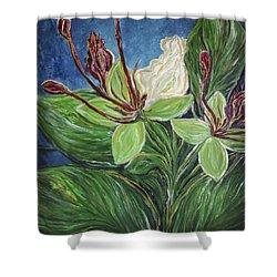 Ifit Flower Guam Shower Curtain